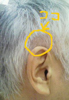 hair%20cut-2.jpg