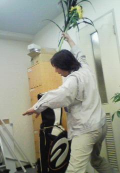 ikebana2-1.jpg