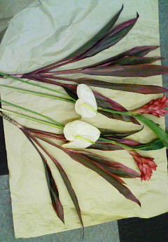 ikebana~2-3.jpg
