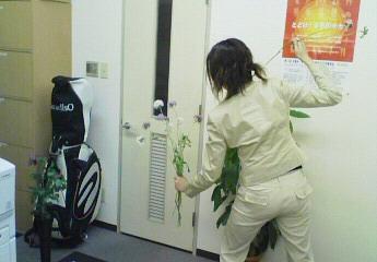 ikebana~3.jpg