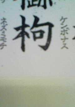 kenbonasu.jpg
