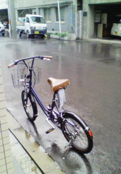 rain090522.jpg